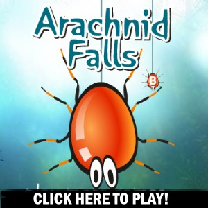 Arachnid Falls -  Action Game